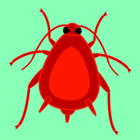 aphid: Illustration of the red aphid insect icon