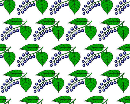 bacca: Seamless pattern of the bird cherry fruits and leaves