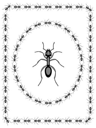 Illustration of the ant insect icon