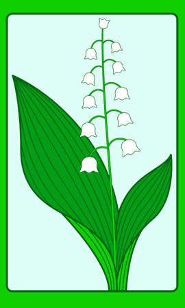 lily of the valley: Illustration of the lily of the valley on frame