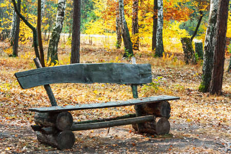 Rustic vintage bench in the autumn park Stock Photo