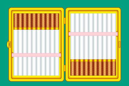 Illustration of the cigarette case on green background