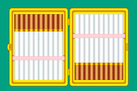 Illustration of the cigarette case on green background