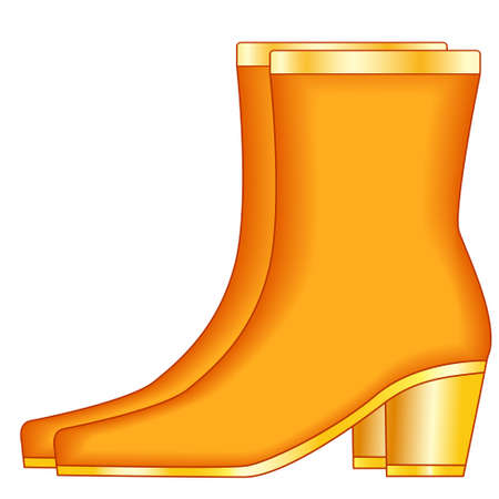 Illustration of the boot pair with gold heels Ilustrace