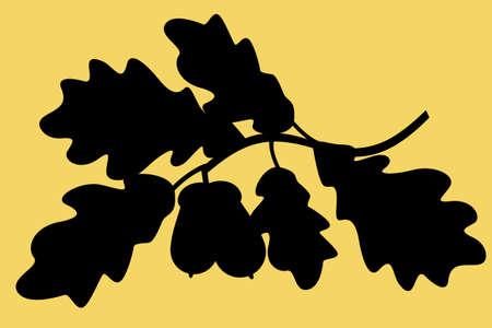 Illustration of the silhouette oak twig