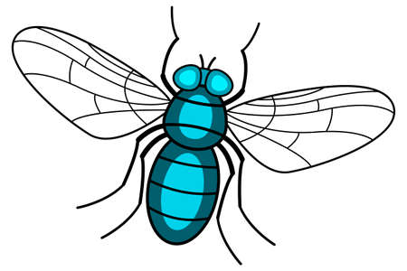 Illustration of the fly insect icon