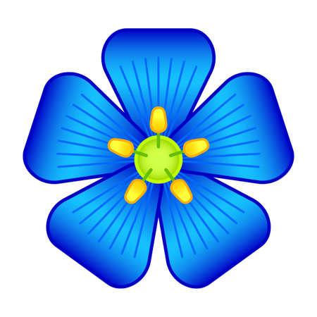 Illustration of the flax flower head Ilustracja