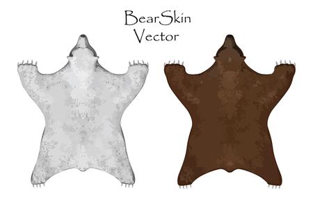 pelt: Bear pelt. Big brown and white bear . Hunting trophy. Vector illustration. Interior Design Set