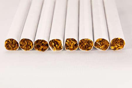 Tobacco 2 Stock Photo - 23515576