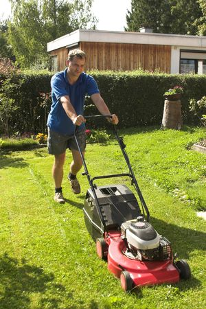 cutting grass Stock Photo - 3324226
