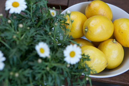 fresh yellow lemons with white daisies on the table
