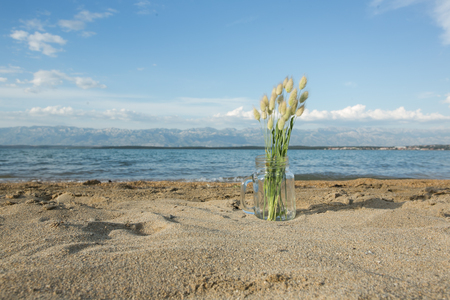summer weed bouquet on the summer beach