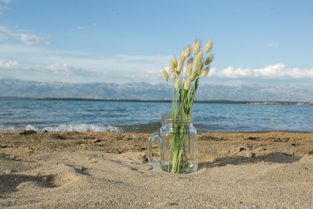 summer grass bouquet on the summer beach