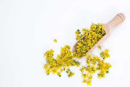 Fresh yellow flowers on the spoon Stock Photo