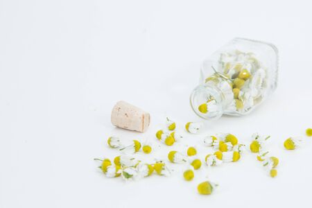 Chamomile flowers with the spoon on the white background