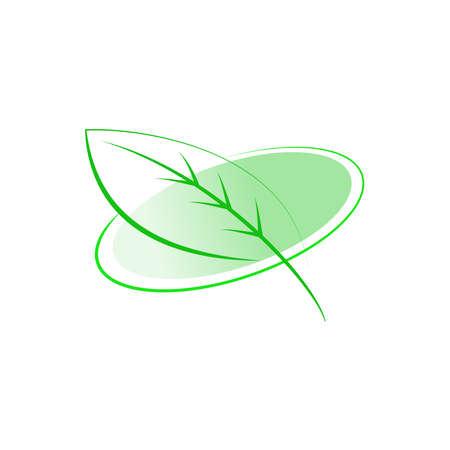 reflection of life: leaf design element