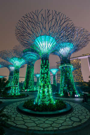 artificial lights: Singapore, Singapore - circa September 2015: Supertree Grove in Gardens by the Bay, Singapore