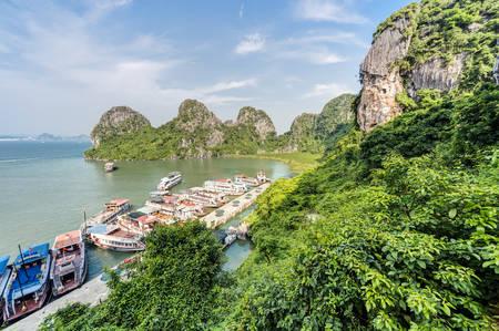 halong: HALONG BAY, VIETNAM - CIRCA AUGUST 2015: Cruise ships in Dau Go island bay, Halong Bay, Vietnam