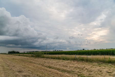 midwest: Rural view in Midwest with clouds and sunset Stock Photo