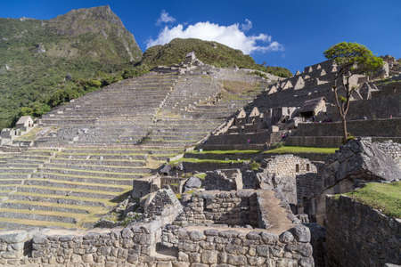 the lost city of the incas: Terraces of Machu Picchu sacred lost city of Incas in Peru Stock Photo