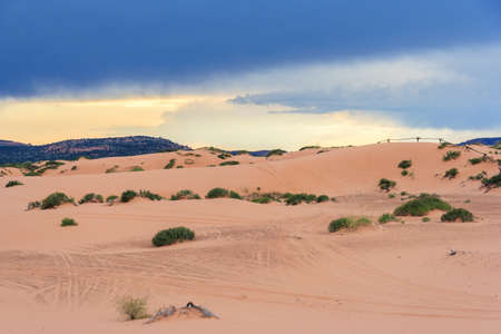 Coral Pink Sand Dunes State Park in Utah at sunset