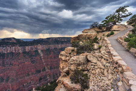 Northern Rim of Grand Canyon from Cap Royal and Walhalla Overlook, Arizona, USA 版權商用圖片 - 58601303
