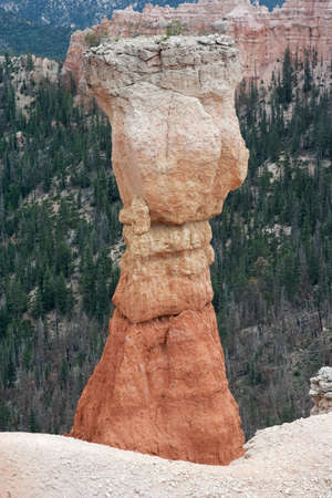 Hoodoo Pinnacle Stone at Bryce Canyon National Park, Utah, USA 版權商用圖片