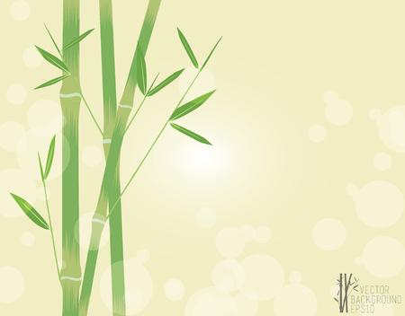 Green Bamboo, vector illustration