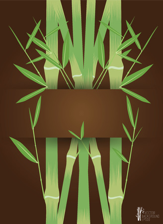 Green Bamboo on brown background, vector illustration Vector