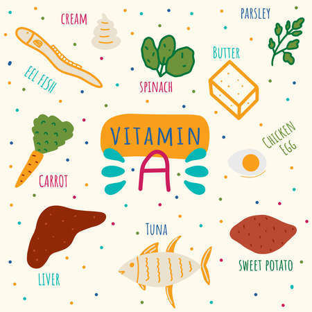 Vitamin A containing foods: liver, spinach, parsley, butter, eggs, eel, tuna, sweet potato, carrot. Beta-carotene foods hand drawn vector illustration.