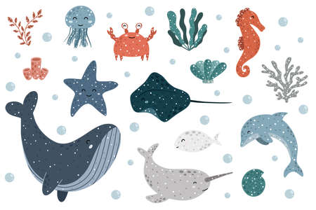 Cute collection of sea animals with: jellyfish, crab, seaweed, marine polyps, seahorse, starfish, clam, marine ray, dolphin, fish, whale, narwhale and water bubbles. Scandinavian vector illustration.