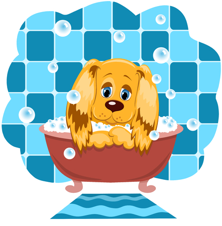 dog grooming: The dog bathes in a bathroom. Cartoon illustration. Illustration