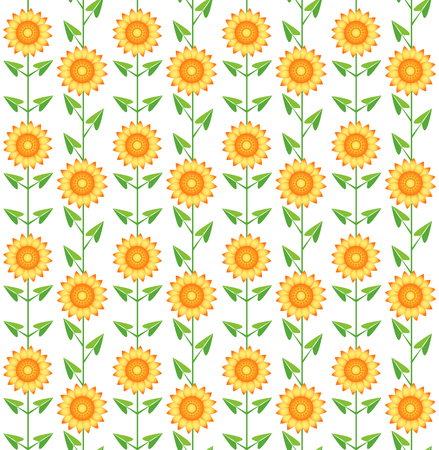 Seamless pattern sunflowers. On the white. background. Vector