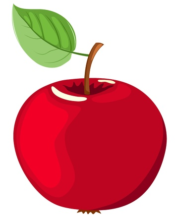 The red apple. Vector