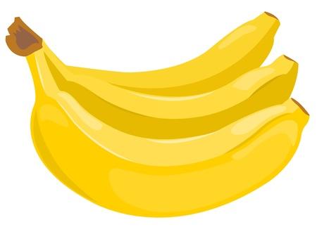 Sheaf of bananas. Vector