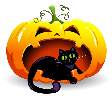 illuminate: The black cat lies in a pumpkin. Vector illustration. Isolated on white.