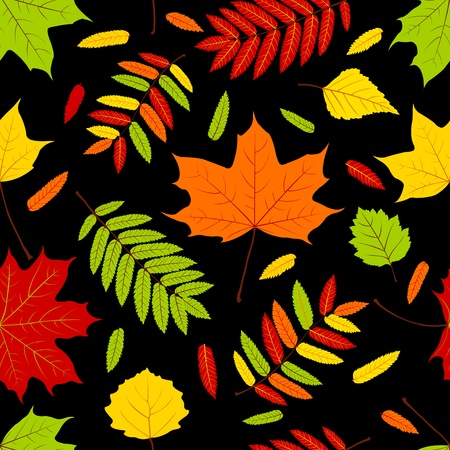 Autumn leaves on the black. Seamless pattern. Vector background Stock Vector - 10799027