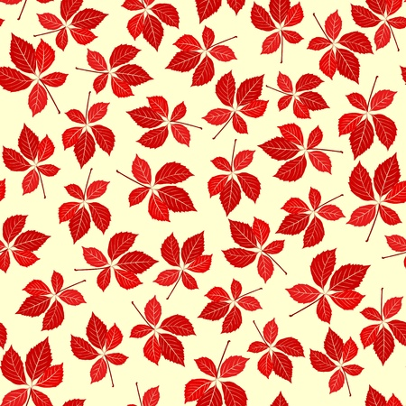 foliate: Seamless virginia creeper pattern. Vector nature background.