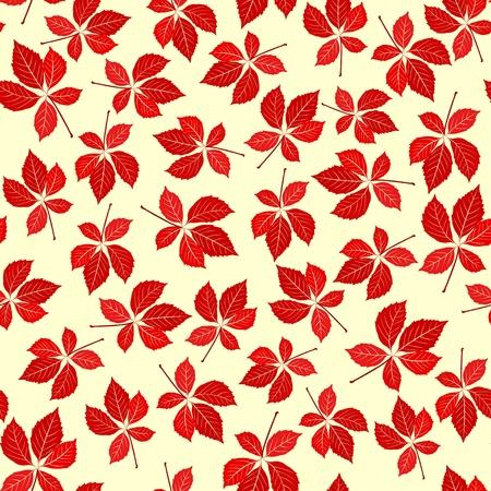 virginia: Seamless virginia creeper pattern. Vector nature background.