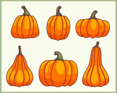 large group of object: Set of pumpkins  Illustration