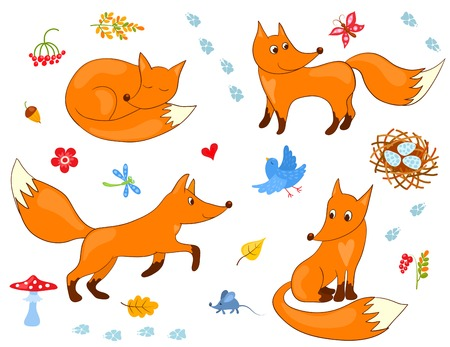 Set of cute foxes. Vector cartoon illustration. Vector