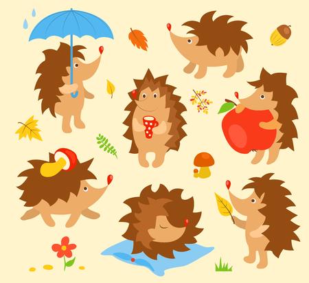 Set of simple cute hedgehogs. Vector cartoon illustration. Vector