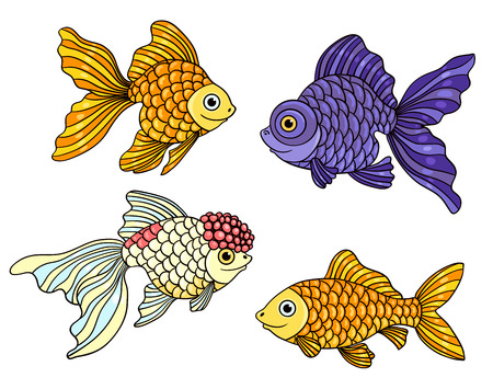 Set of the different goldfishes. Vector illustration. Isolated on white. Illustration