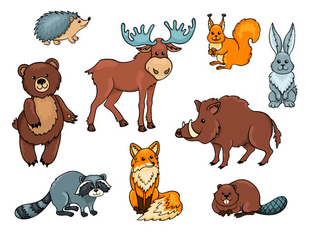 animales del bosque: Los animales del bosque establecen. Aislado en blanco.