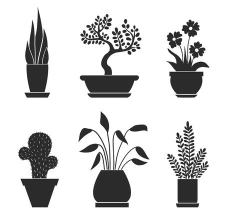 Set van thuisbloemen