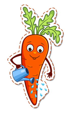 Cartoon carrot water itself from a watering can. Vector illustration isolated on white.