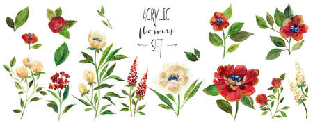 Arcylic floral illustration. Set with bordo and white flowers.
