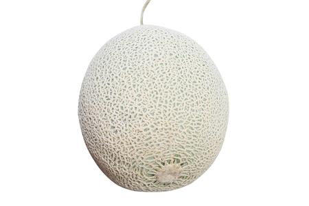 Rock Melon Isolated,green melon nets 版權商用圖片