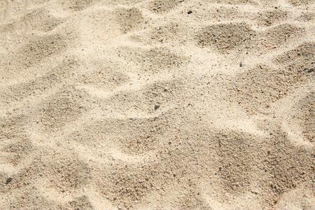 Texture sand background