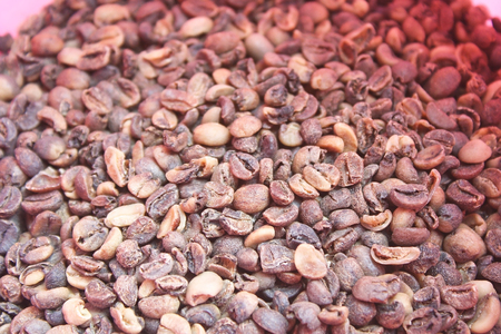Raw coffee beans have been sorted ,Low quality raw coffee beans